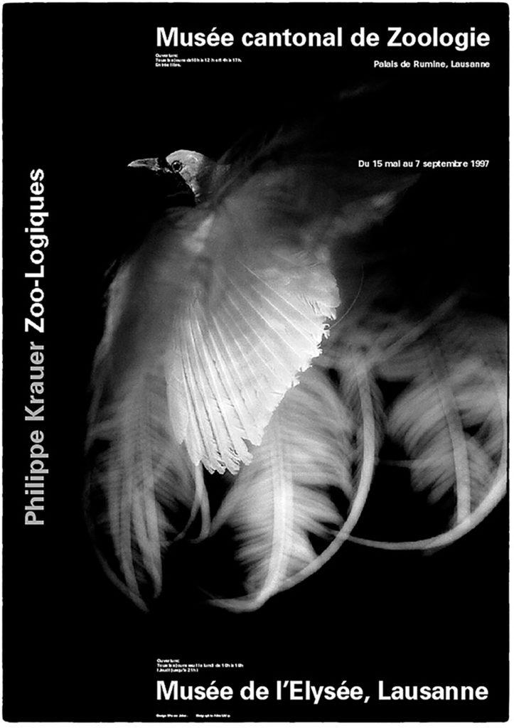Copyright © Light Photographic studio -  Philippe Krauer - Lausanne